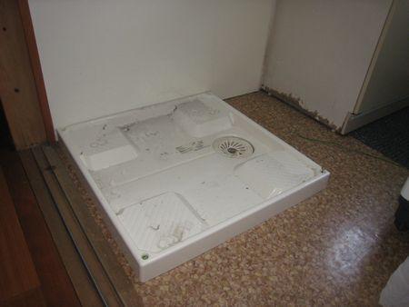 洗濯機用盤